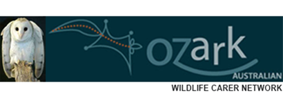 OzArk Wildlife Carer Network
